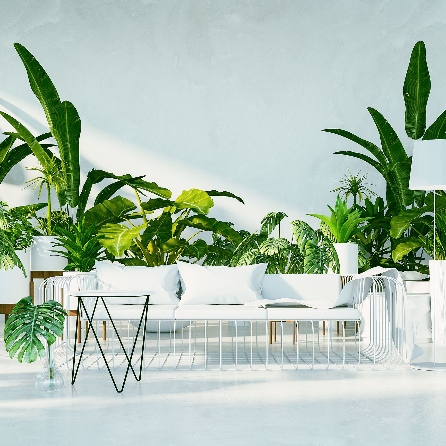 Go Green with the Interiors